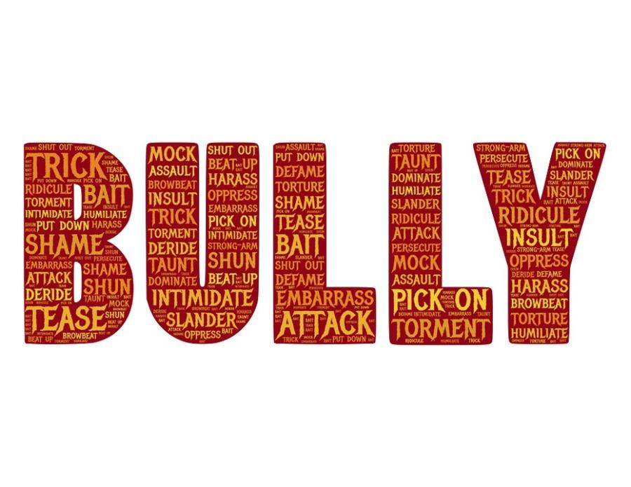 bully-655660_960_720