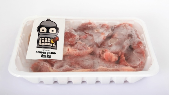 Bender Was Right I hate being a Meat Bag JPG