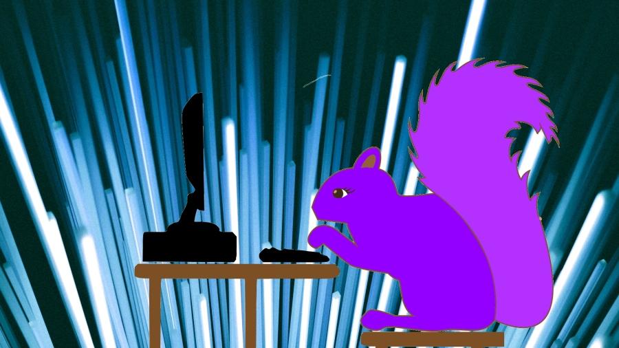 Catch 22 Purple Squirrel JPG